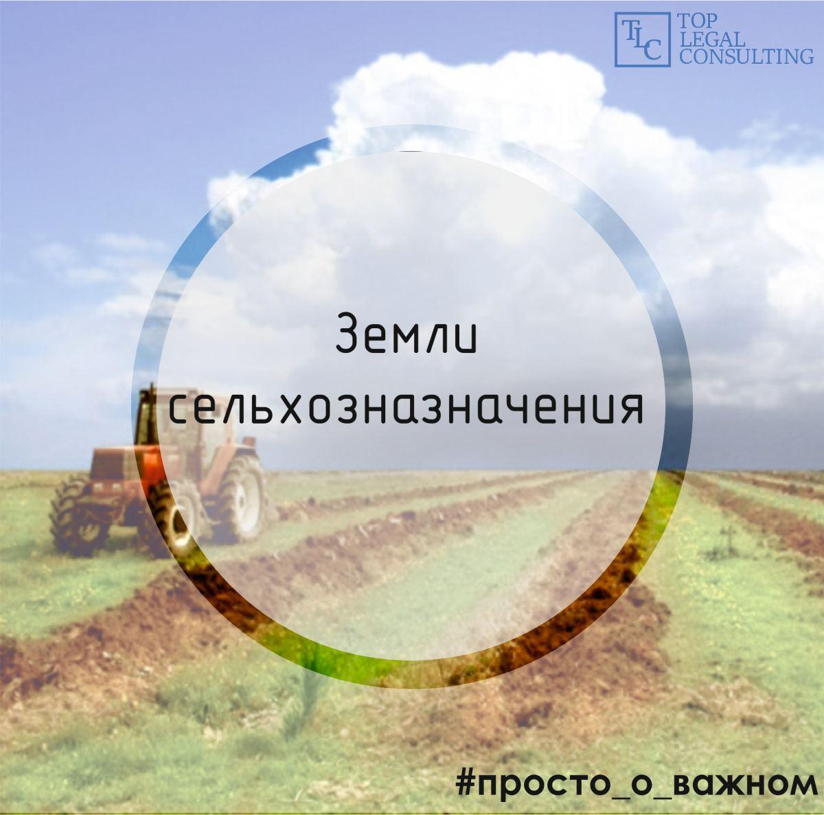 юридическая консультация о земельном кодексе